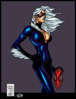 Black Cat by Jats