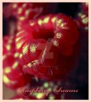 my rasberry dreams by french-mermaid