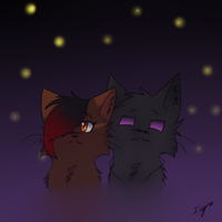 Lets watch the stars. by Icyiblu