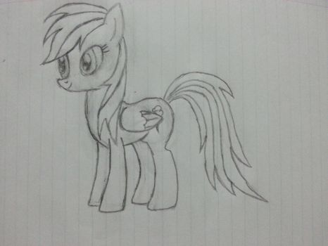 Second Rainbow Dash sketch by the19thhokage