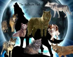 Quileute Pack by Nikolina-Angelova