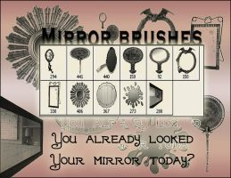 Mirror brushes by JulietteZ