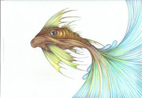 fish by asenone