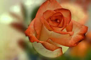 Arose From The Earth by suezn