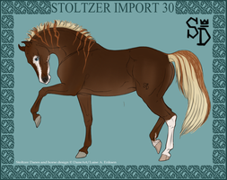 Stoltzer Import 30 by ThatDenver