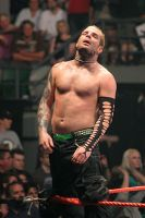 WWE - Nov07 - Jeff Hardy 20 by xx-trigrhappy-xx