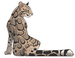 Clouded leopard by The-F0X