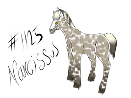 1125 Narcissus    By Weatherbroke Stables by OceanLore