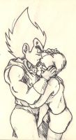 bulma and vegeta by tonitetonite95