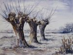 Three willows by adrymeijer
