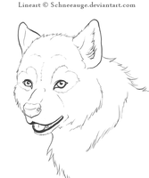 LINEART Wolf puppy by Schneeauge