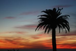 Sunset Silhouette by R3dback-Ruud