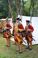 Cannock Chase Military History Weekend 2015 (22) by masimage