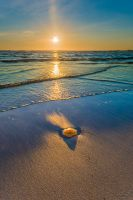 The sun sets on jellyfish by KennethSolfjeld