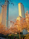 Spring in the City by di3ggo