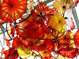 Chihuly's Chandelier glass scuplture by JellyRollDesigns