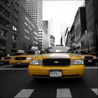 new york taxi by toko