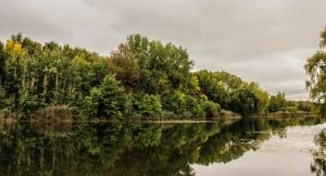 Early Autumn Reflection by Kitteh-Pawz