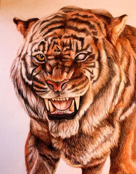 Shere Khan by EllyWithAWhy