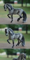 Dapple Gray Andalusian by sVa-BinaryStar
