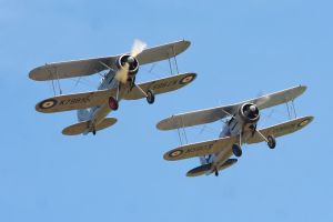 Gloster Gladiator Pair by Daniel-Wales-Images
