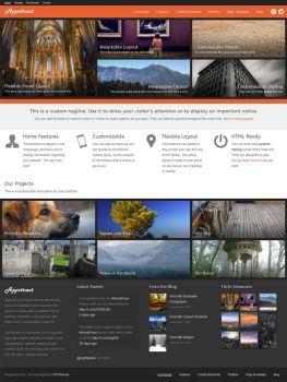 Appstract - Photography Theme for WordPress by cpothemes