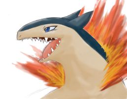 Blue eyed Typhlosion by KH-LoZ-er