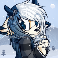 {c} winter wonderland by heartXsurgery