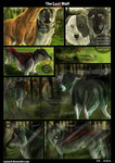 The Last Wolf page 20 by CasArtss