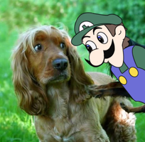Pop goes the Weegee by Dann-The-Yoshi