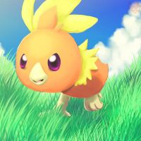 Torchic by Pand-ASS