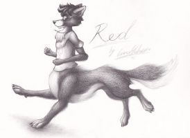 Red's WolfTaur Run by theredknight100