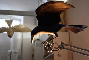 Handmade bird of paper and wood by ZackMclaughlin