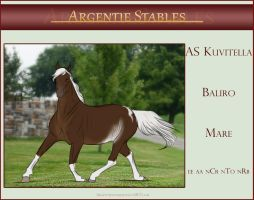 AS Kuvitella - SOLD by Argentievetri