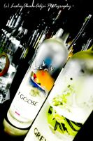 Grey Goose by bibb189