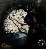 With Time... by tt2008 by Fantasy-Fellowship