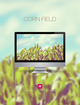 Corn field by Mahm0udWally
