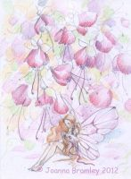 Fuchsia Fairy sketch by JoannaBromley