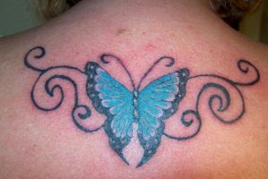 butterfly by greenbaypara