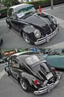 Black Old Bug by gupa507
