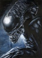 Alien vs Predator - Xenomorph by speedpickle
