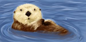Otter by Dragon-Factor