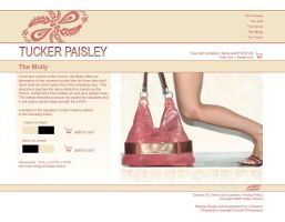 Tucker Paisley v3 Mock-up by cjgraphix