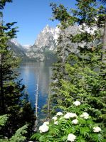 Jenny Lake at Grand Teton National Park by lupinelover