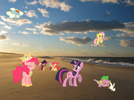 Ponies In Real Life!!!! (Crazy Stuff At The Beach) by pokefan88