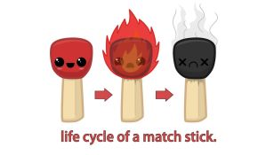 life cycle of a match stick by Earcl01