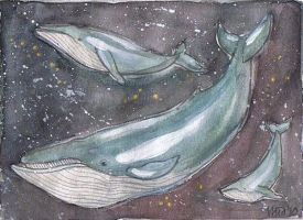 star whales by silverlode