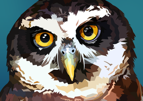 Owl Vector by elviraNL