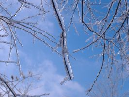 Iced Branch and Blue skies 2 by gamergoth