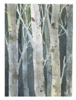 Birches 3 by Jackin